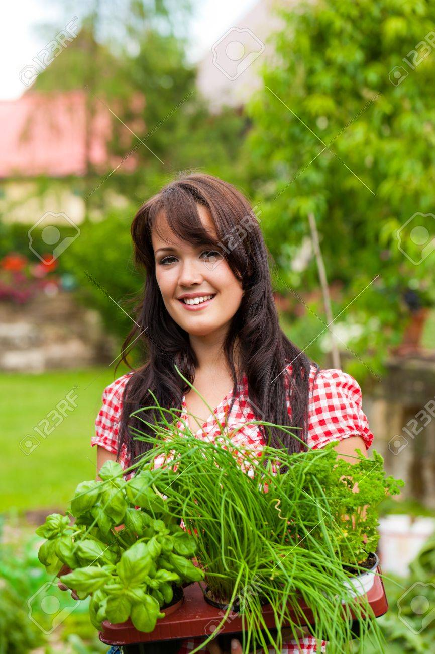 Gardening in summer - happy woman with different kind of fresh herbs - 10021015