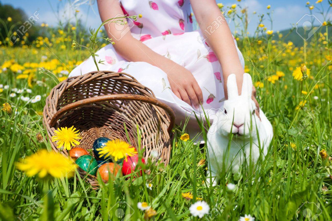 Little girl petting the Easter bunny on a meadow in spring Stock Photo - 11912290