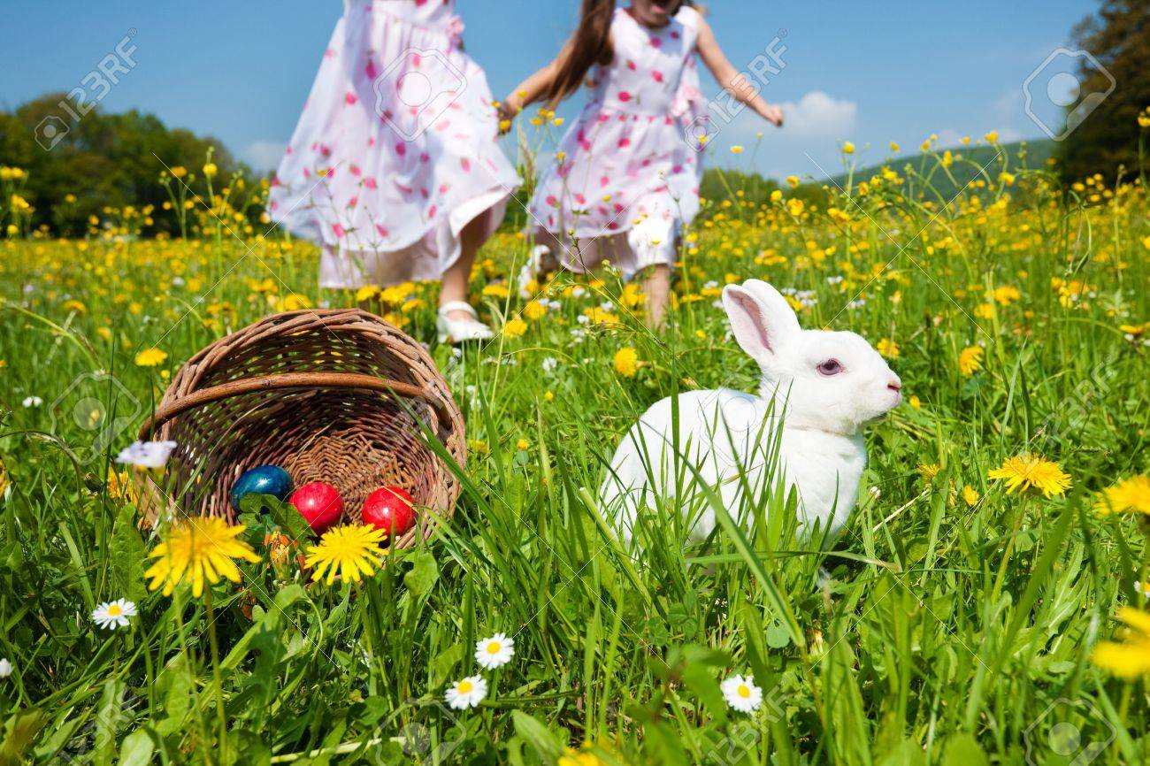 Children on an Easter Egg hunt on a meadow in spring, in the foreground the Easter bunny is waiting - 11912438