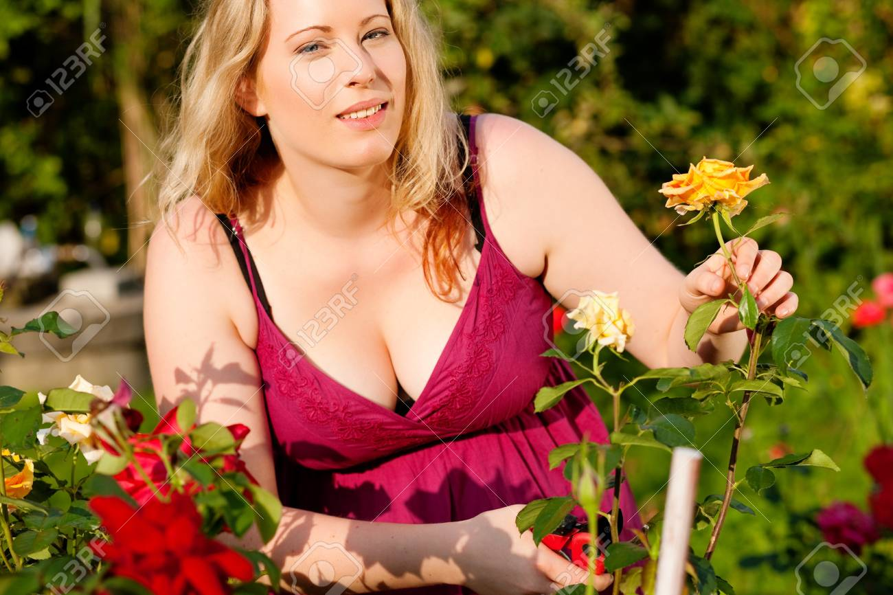 Woman doing garden work cutting the roses at beautifully sunny day Stock Photo - 17743375