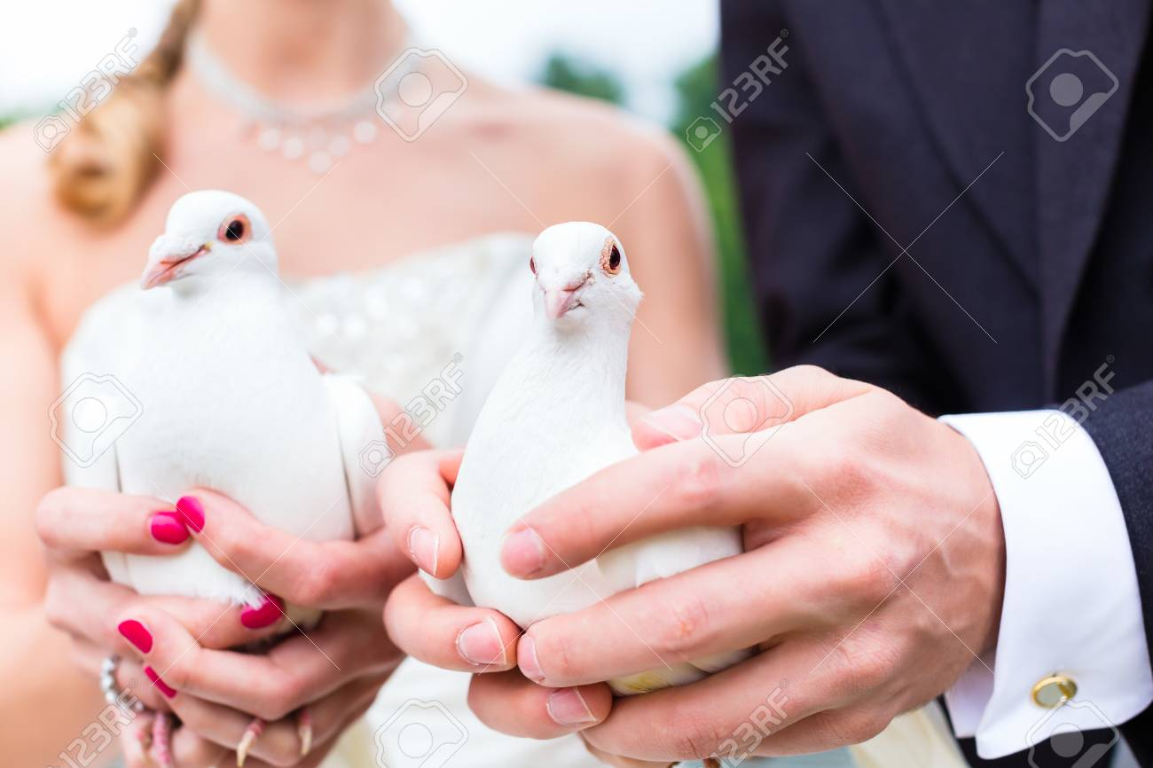 Bridal Couple At Wedding With White Doves Stock Photo, Picture And ...