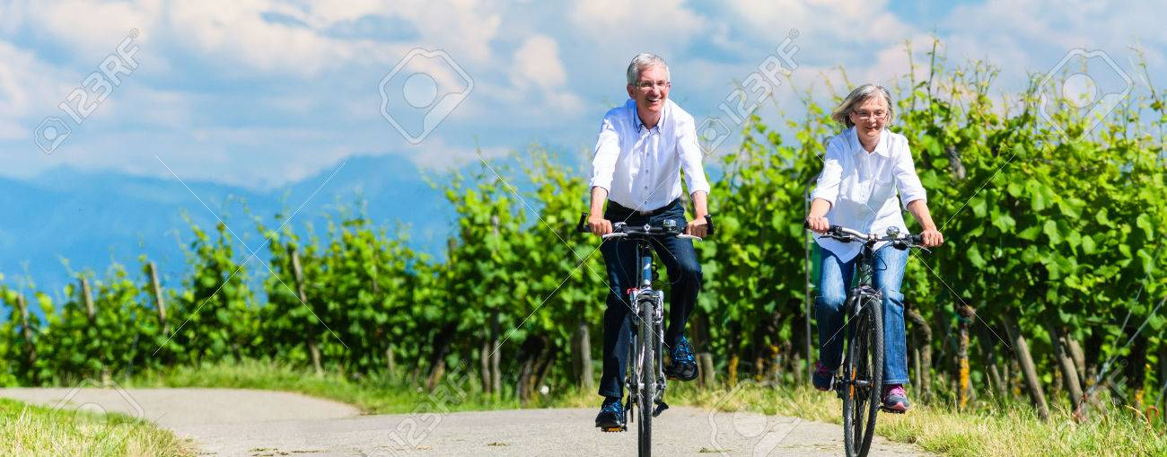 Seniors riding bicycle in vineyard together, panorama picture - 47846996
