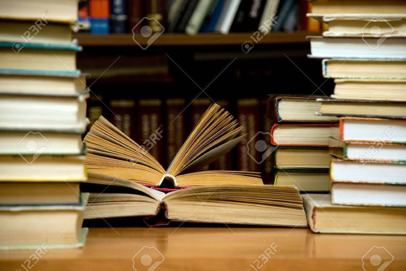 Lots of books at the library. Stock Photo - 2585275