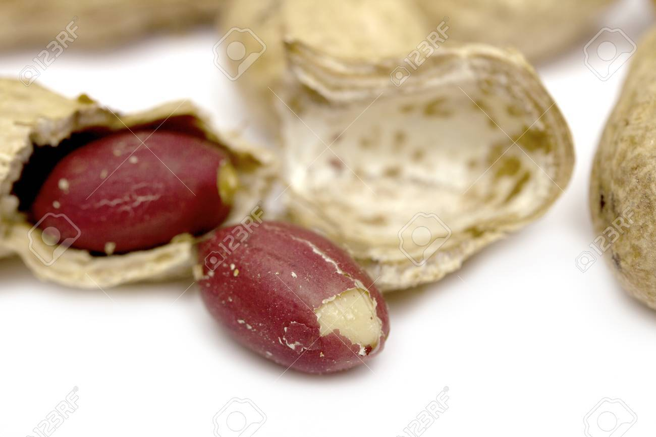 peanuts, peanut Stock Photo - 17616507