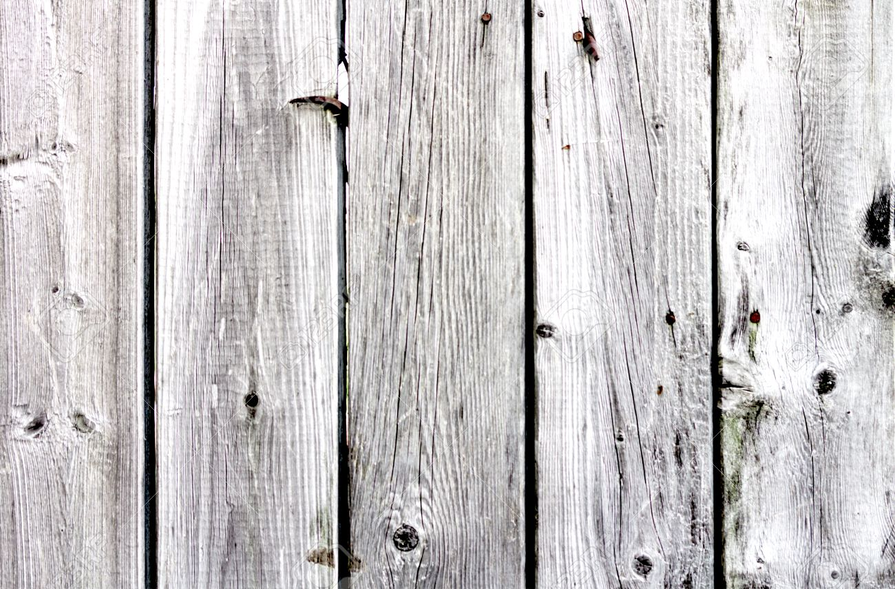 Gray Barn Board Background Stock Photo Picture And Royalty Free