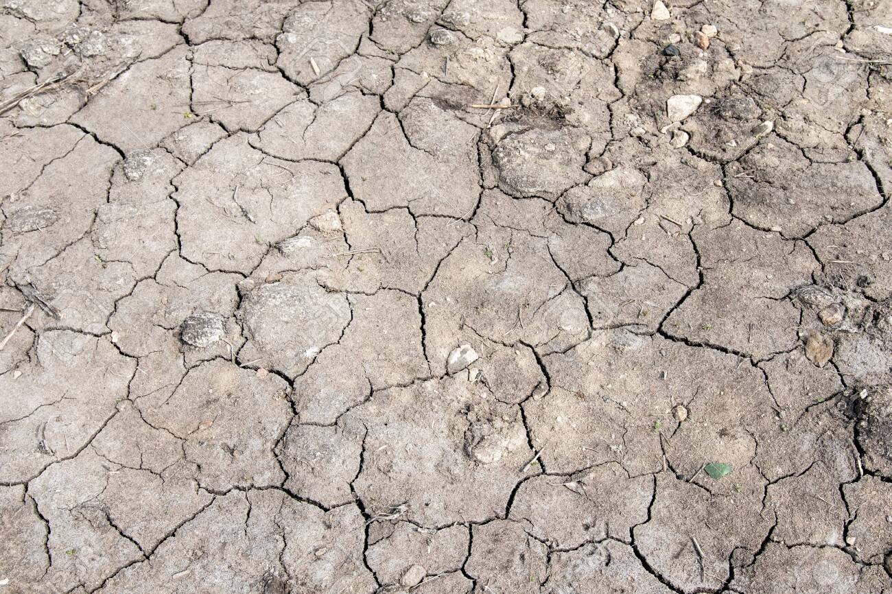 Gray background of dried cracked earth - 151505227