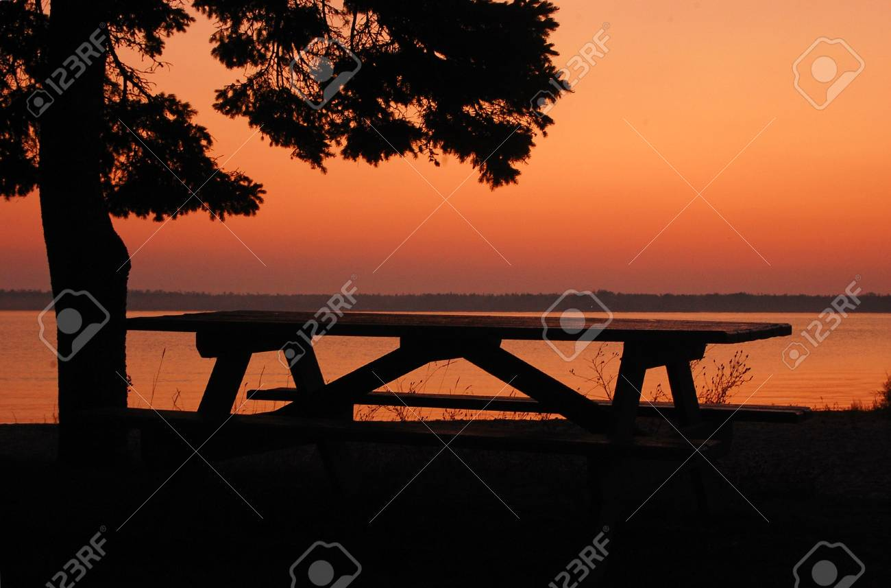 A Picnic Table Sits Empty Near A Lone Tree Along The Lake Michigan - Picnic table michigan