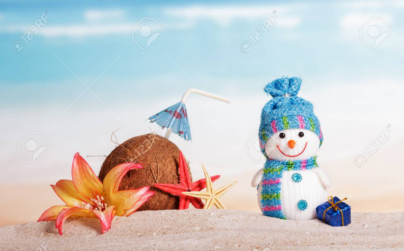 Coconut, starfish, flower, snowman and Christmas present in the sand against the sea. - 65499171