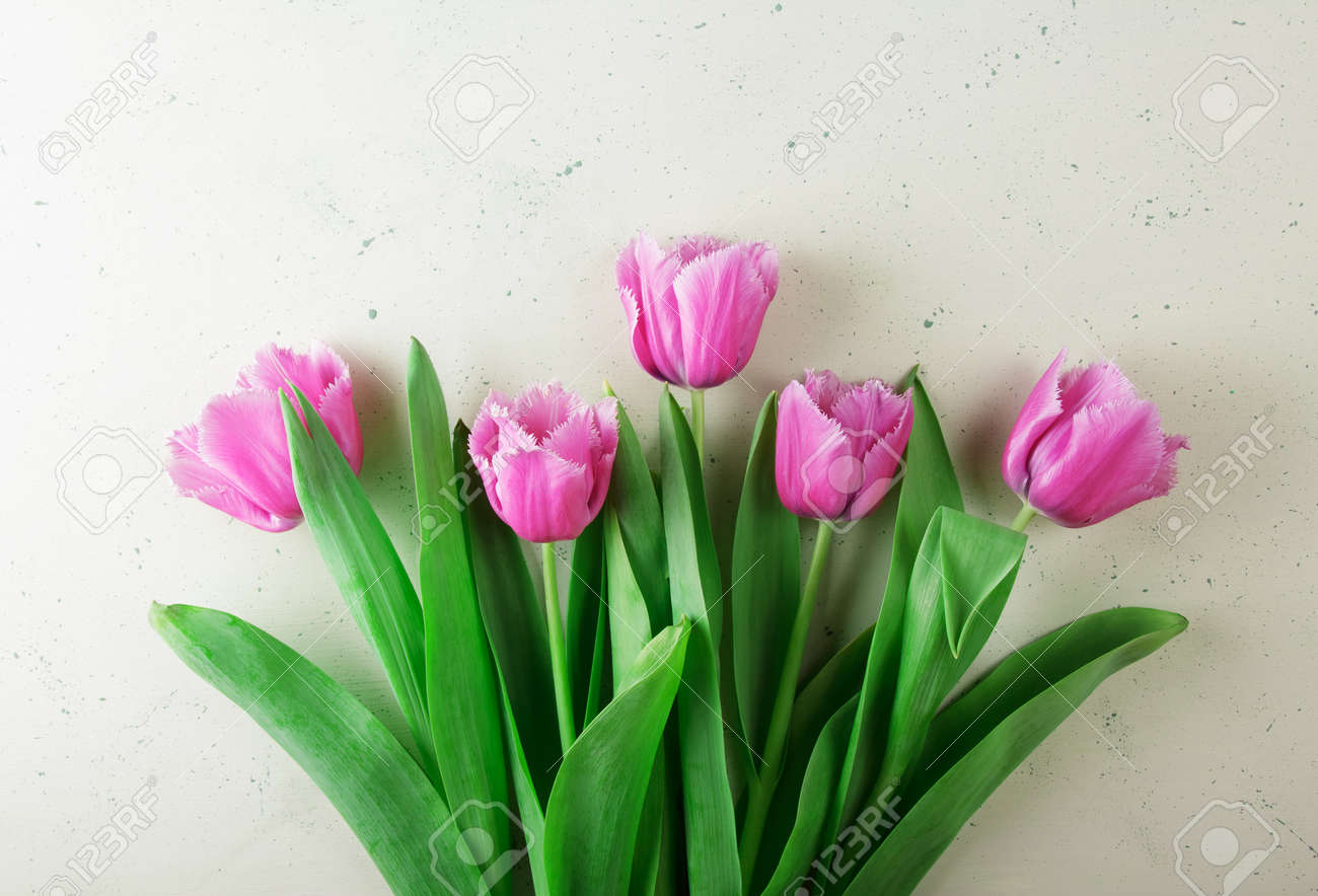 Top view. Fresh beautiful pink tulips with fringe on light background - 167225924
