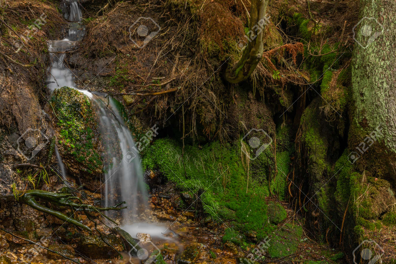 Small waterfall near Lisci valley in spring color fresh wet day - 169616465