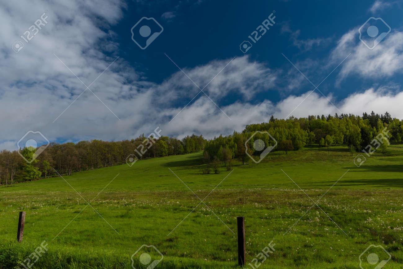 Morning near Nejdek town with fresh green pasture land after night rain - 169616539