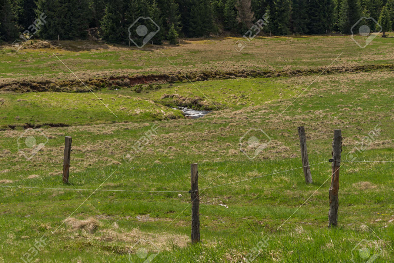 Prebuz village with fresh meadows and forests in Krusne mountains - 169616545
