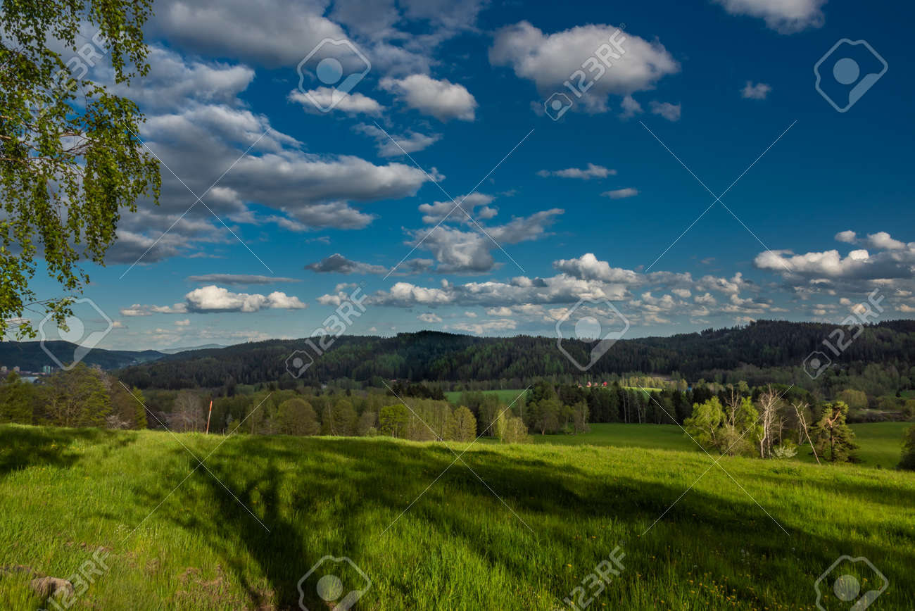 Evening with sunset near Nejdek town with fresh green pasture land after night rain - 169616548