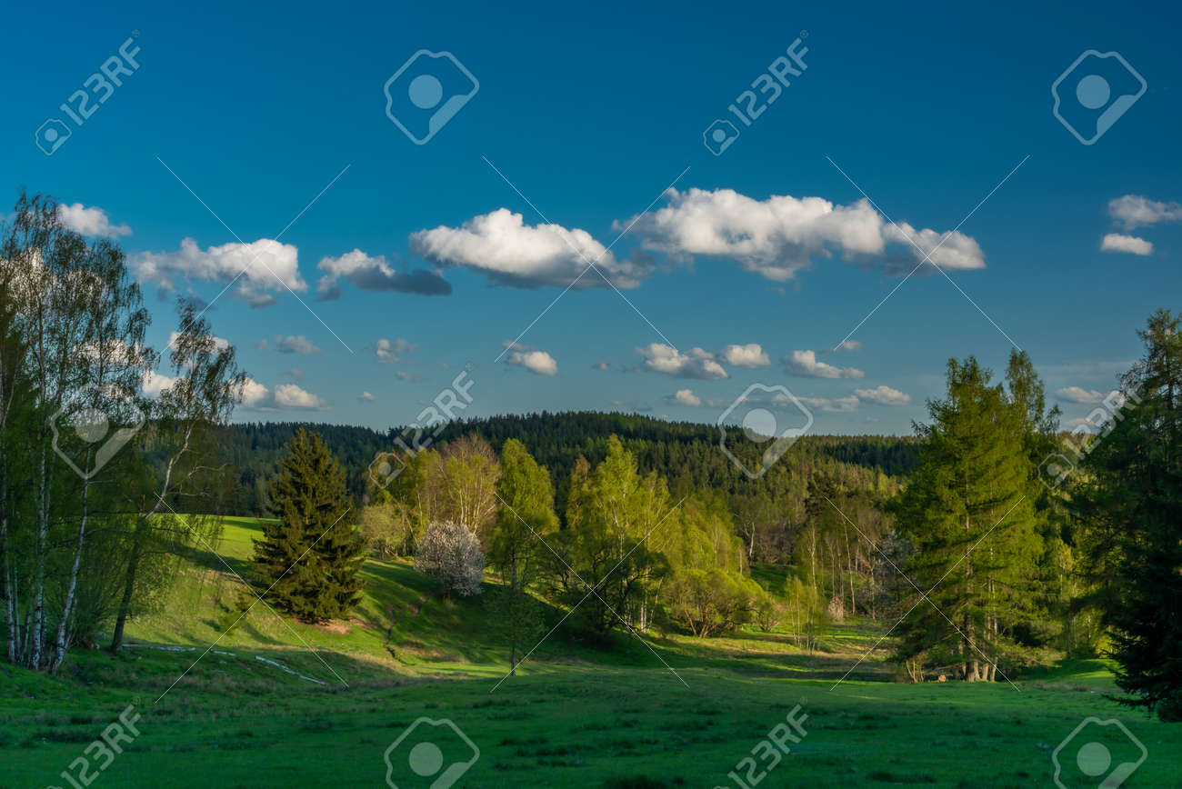 Evening with sunset near Nejdek town with fresh green pasture land after night rain - 169616554