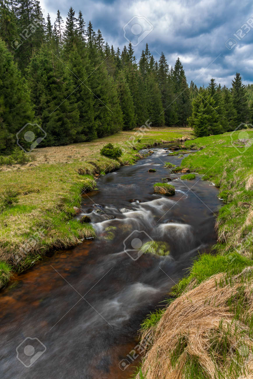 Rolava river with fresh meadows and forests in Krusne mountains - 169616755