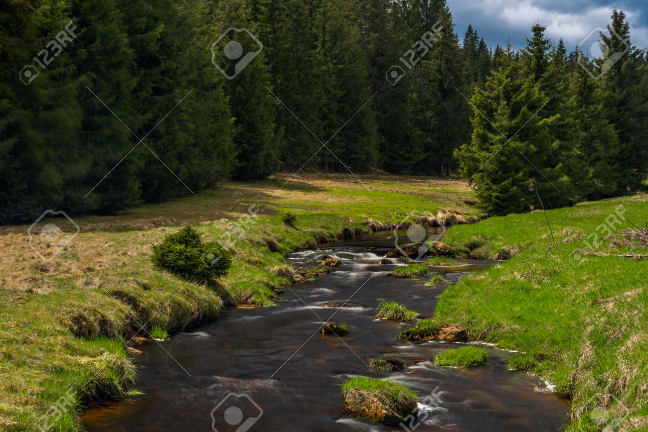 Rolava river with fresh meadows and forests in Krusne mountains - 169616757