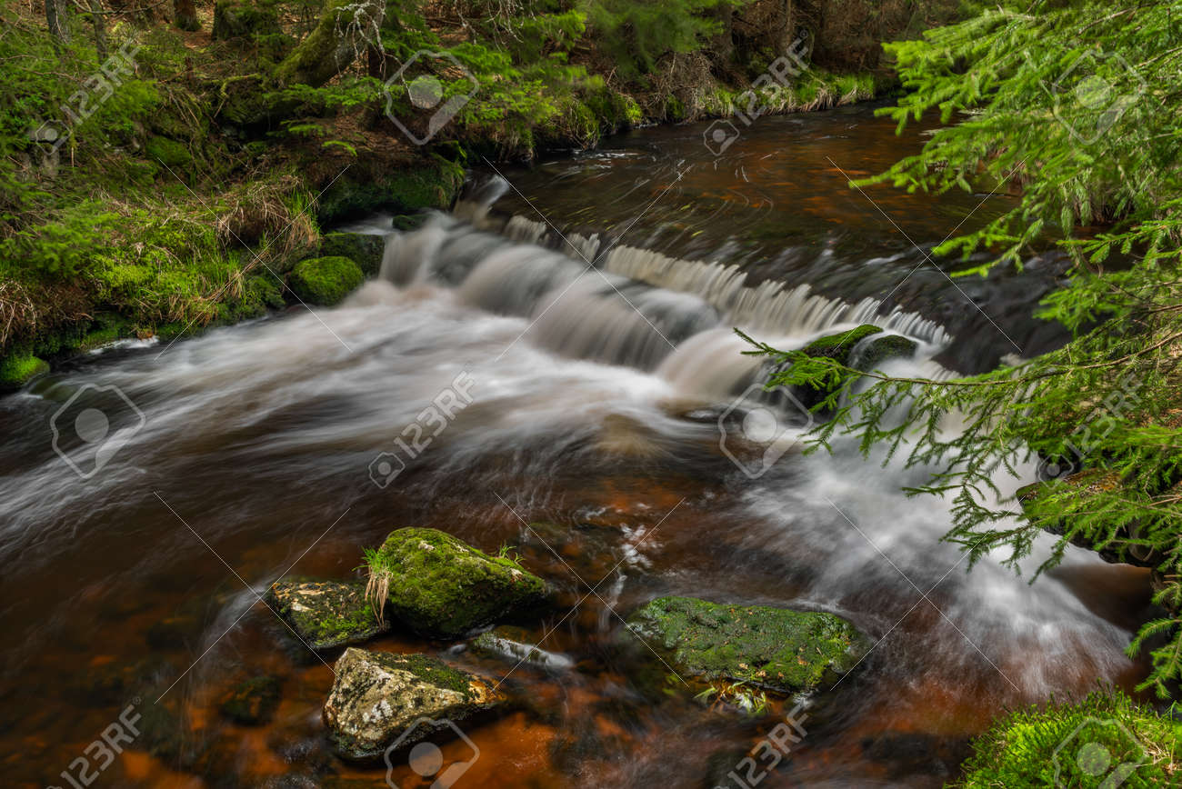 Rolava river with fresh meadows and forests in Krusne mountains - 169616763