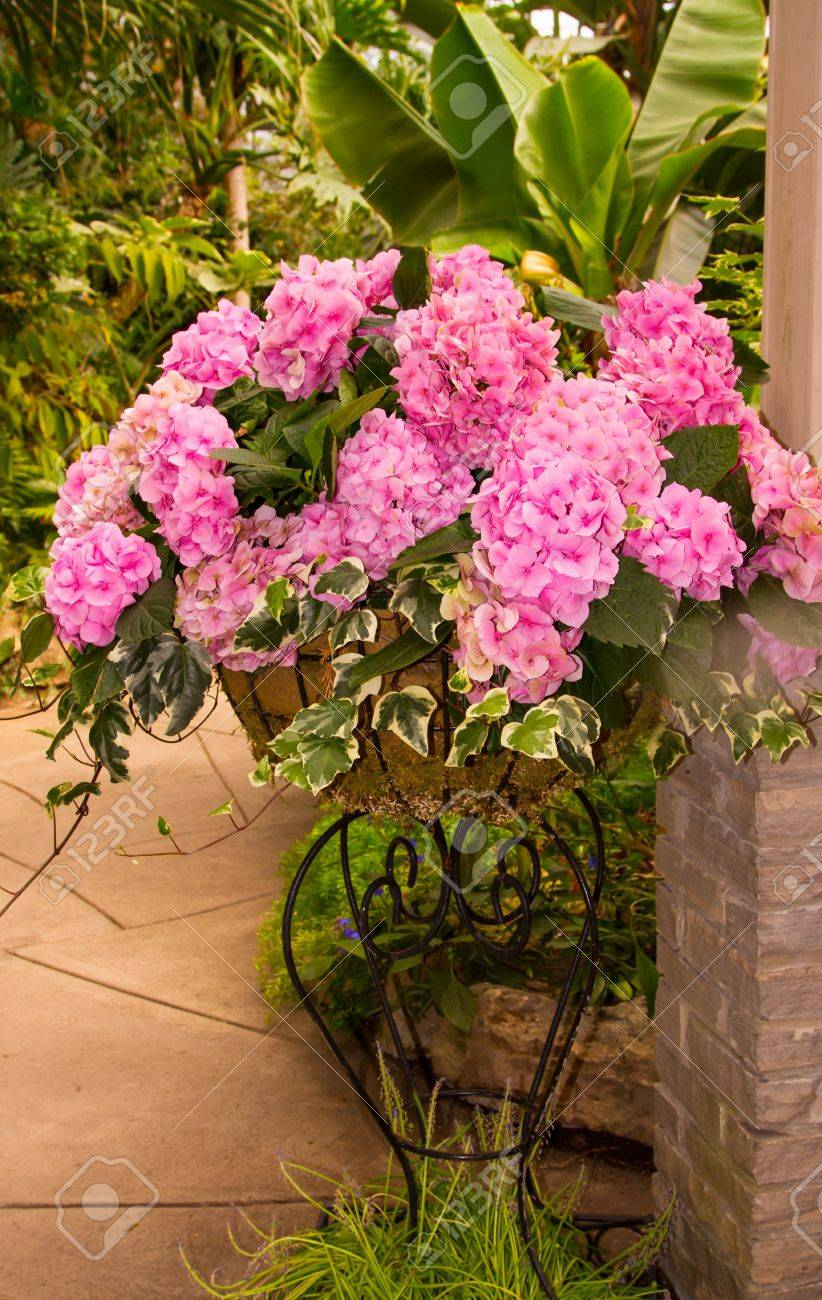 Beautiful Pink Flower Arrangement In A Metal Stand Stock Photo
