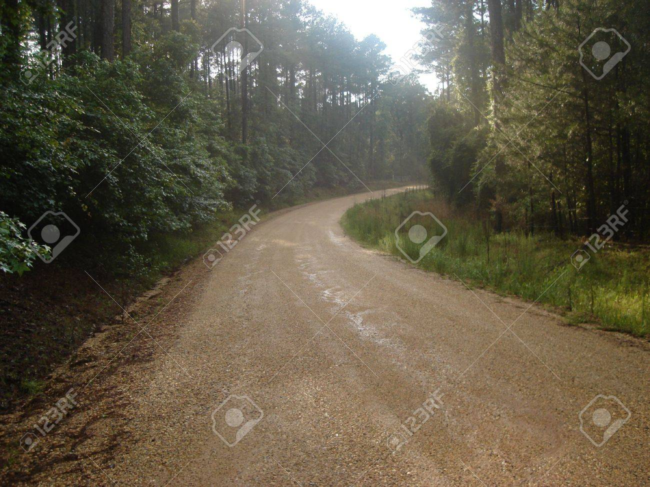 A country road in Louisiana Stock Photo - 4923602