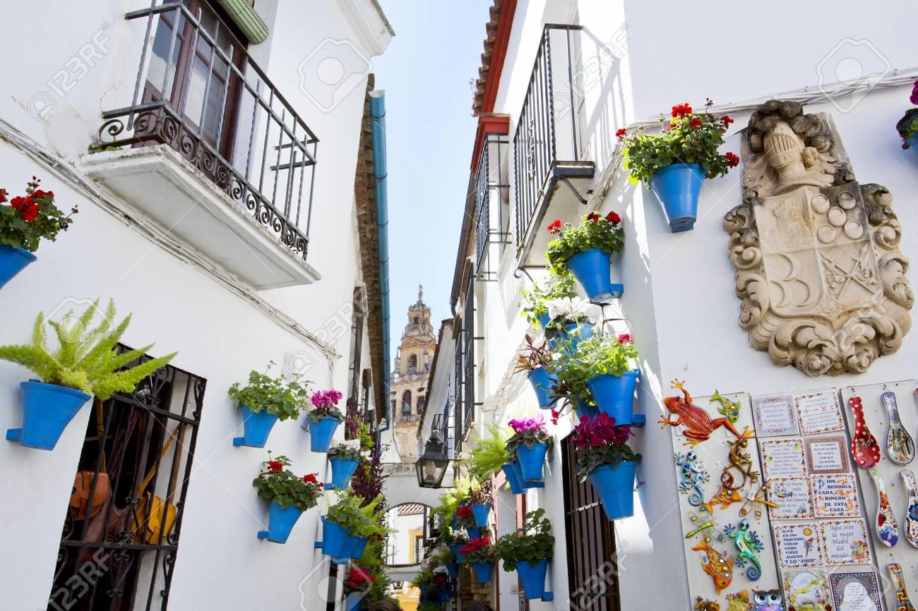 Flowers In Flowerpot On The White Walls On Famous Flower Street
