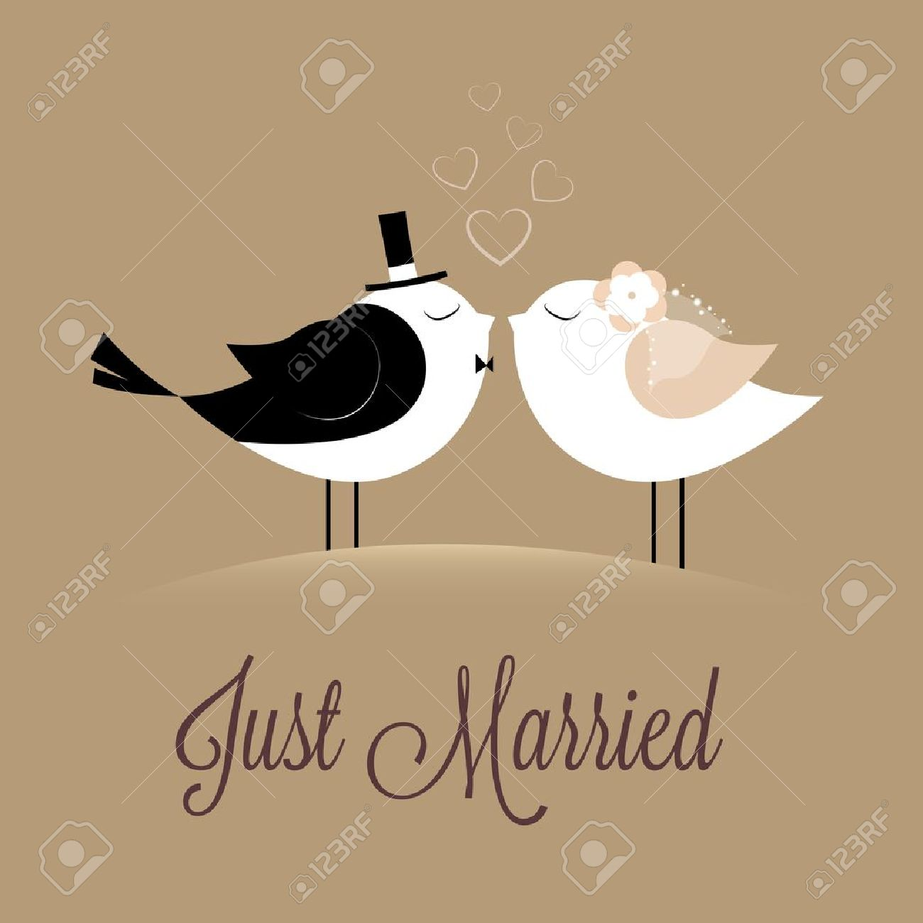 two birds in love Just married on brown background - 22066713