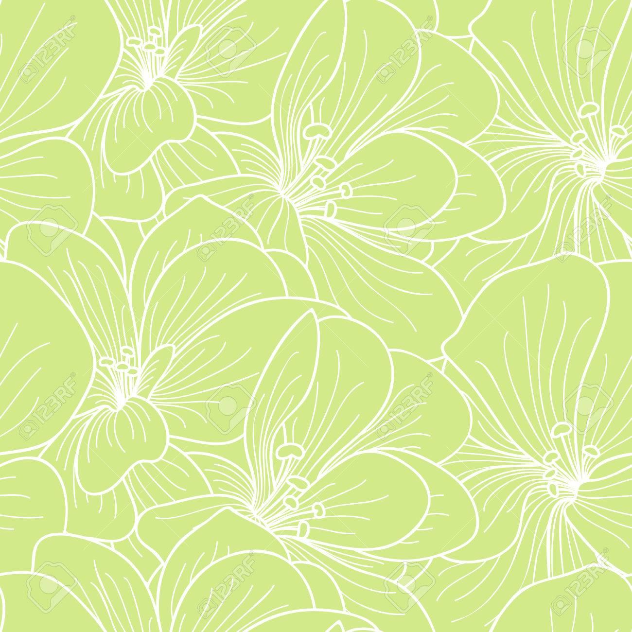 Flores Verdes Y Blancas Geranio Dibujo Lineal Patron Transparente