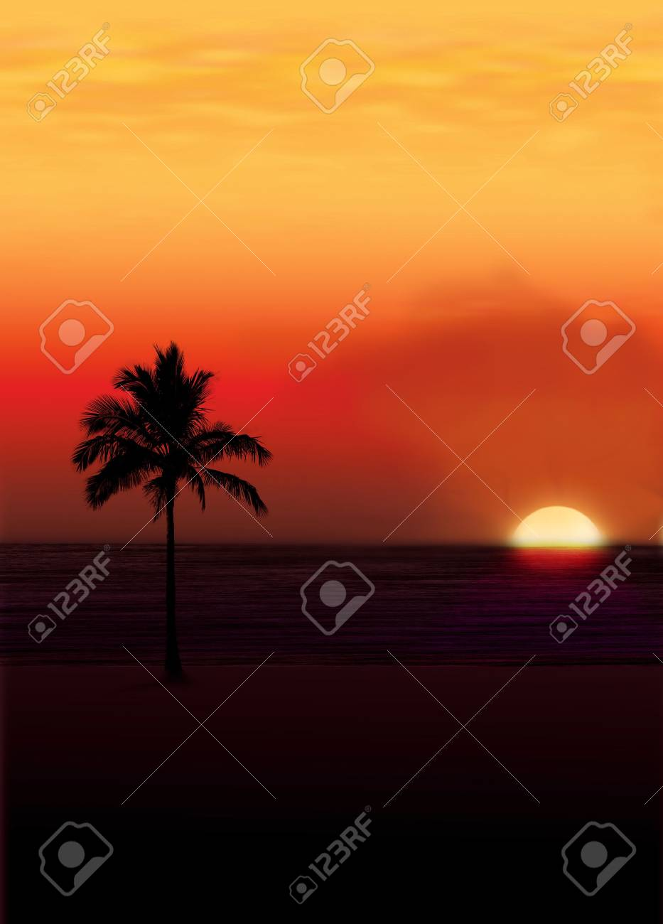 Palm against a setting sun.. Stock Photo - 372850