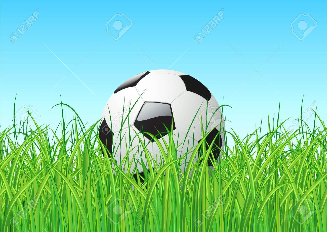 Vector illustration of soccer ball in the grass Stock Vector - 3985885