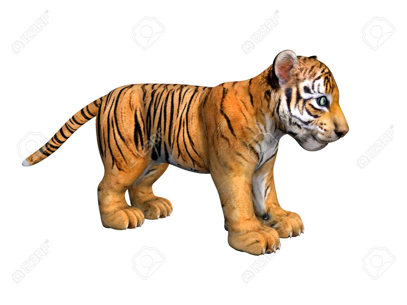 Cute tiger cub 3d image isolated on white background stock photo cute tiger cub 3d image isolated on white background stock photo 72512812 thecheapjerseys Image collections