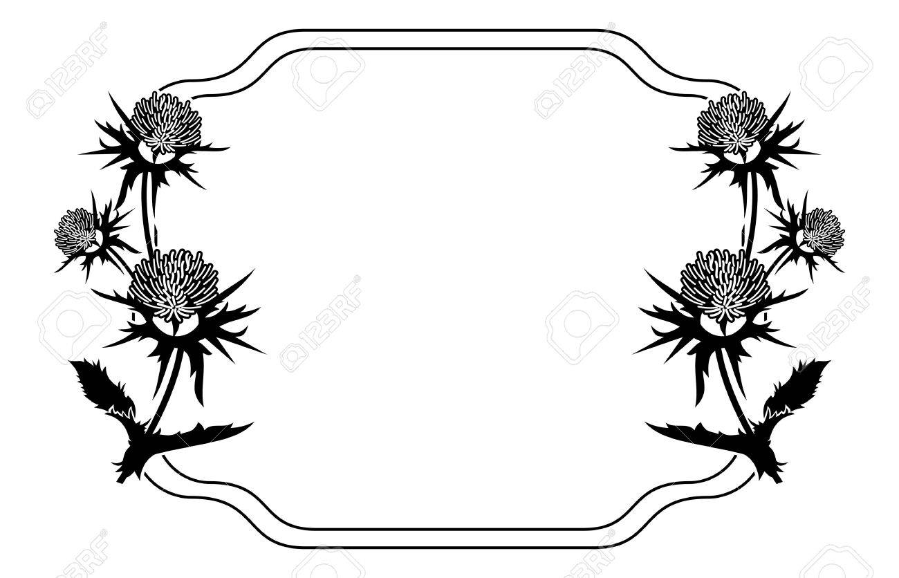 decorative frame with thistle silhouette vector clip art royalty rh 123rf com thistle clipart black and white thistle clip art free