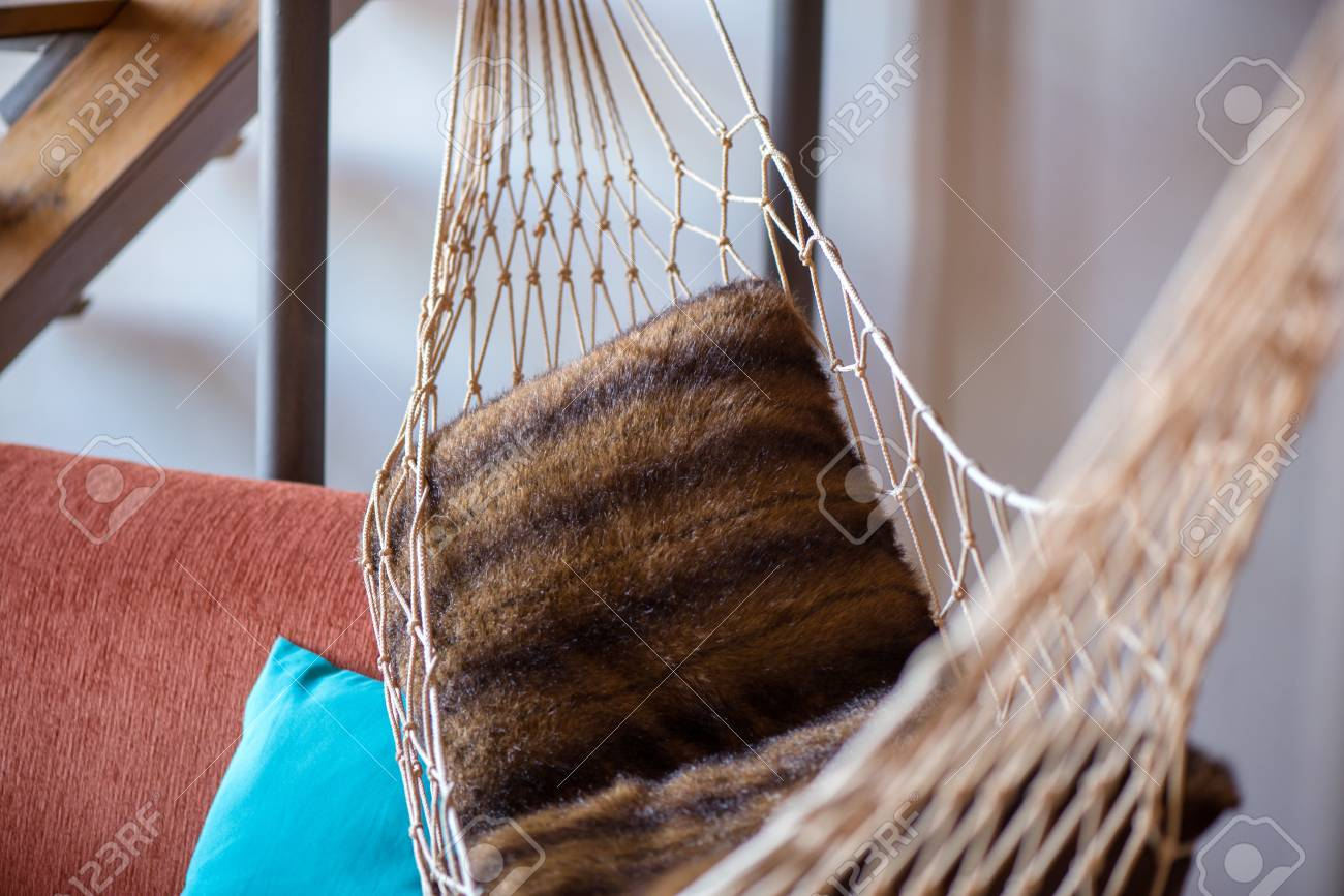 A Woven Hammock Hung In A Modern Apartment To Create A Modern Resort  Feeling. Stock