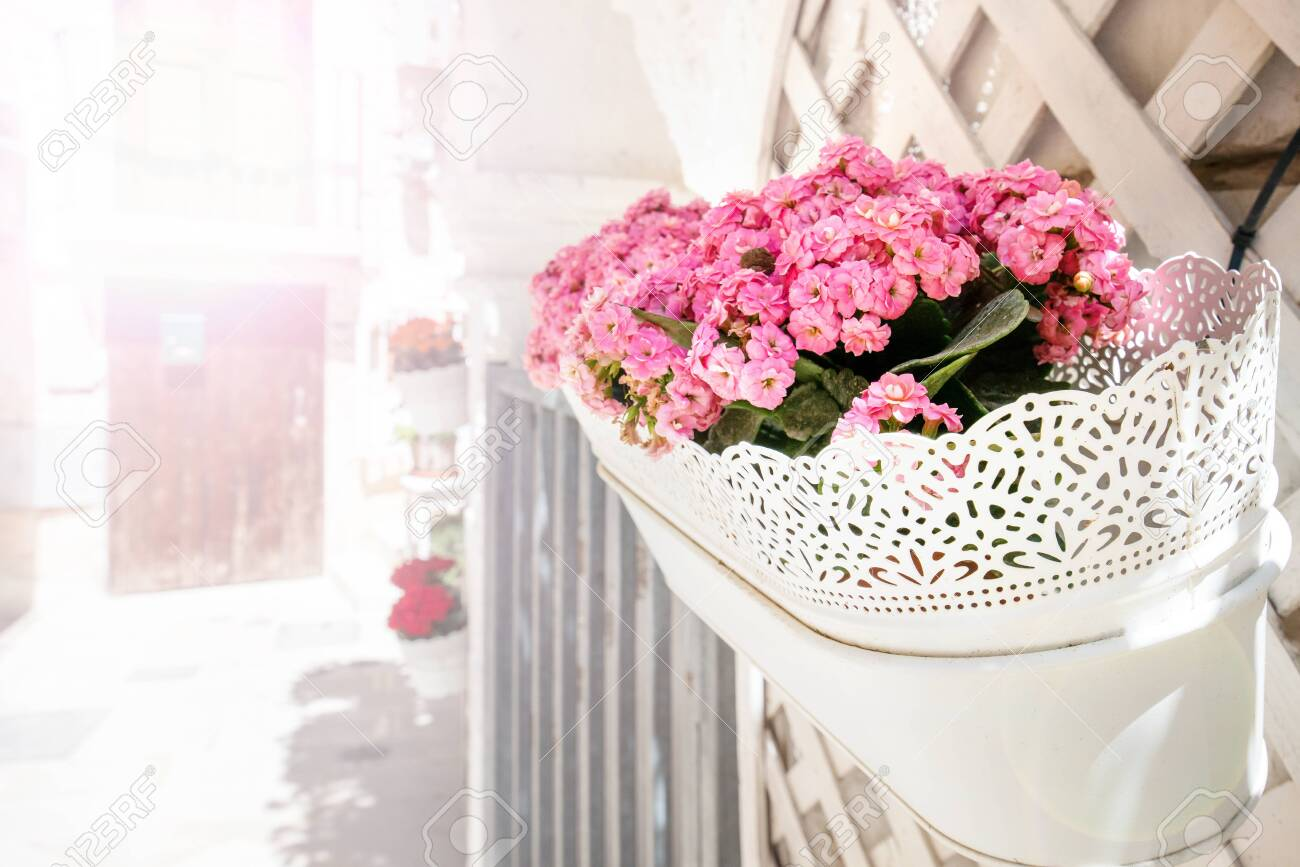 White, vintage flower pots with lace on the facade of the building. Pink blossoms in front of house, apartment or restaurant. Romantic morning in Italy - 119718684