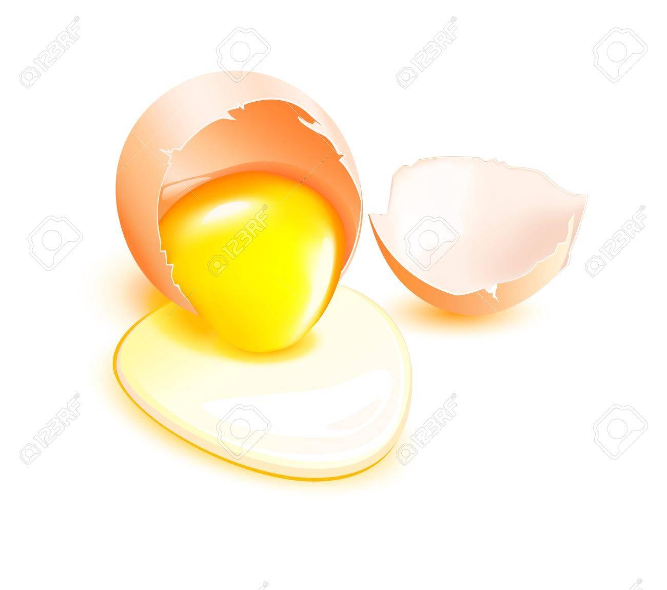 Brown Broken Egg With Flowing Yolk On White Background. Royalty ... for Clipart Yolk  34eri