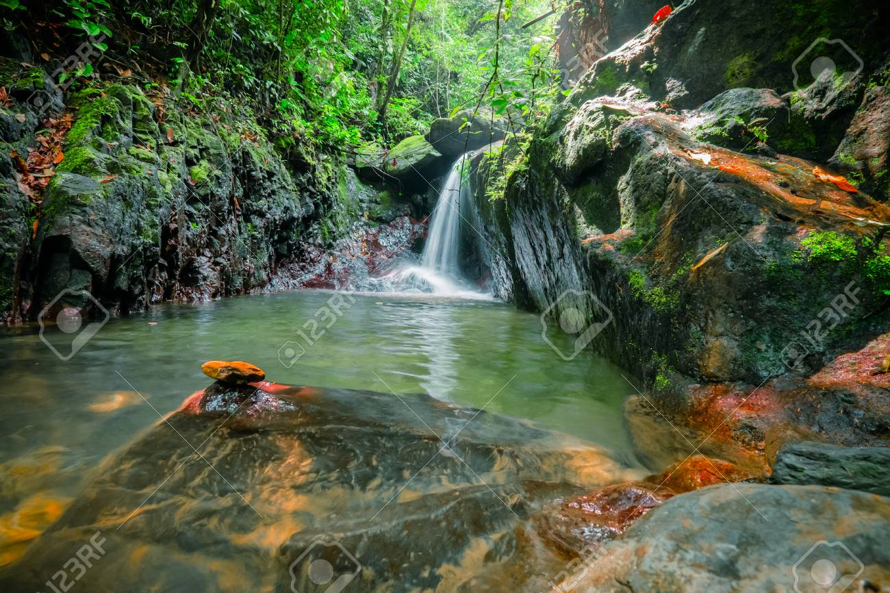Spellbinding Pond With Waterfall In Middle Of Jungle Mysterious Pool Thick Tropical Forest