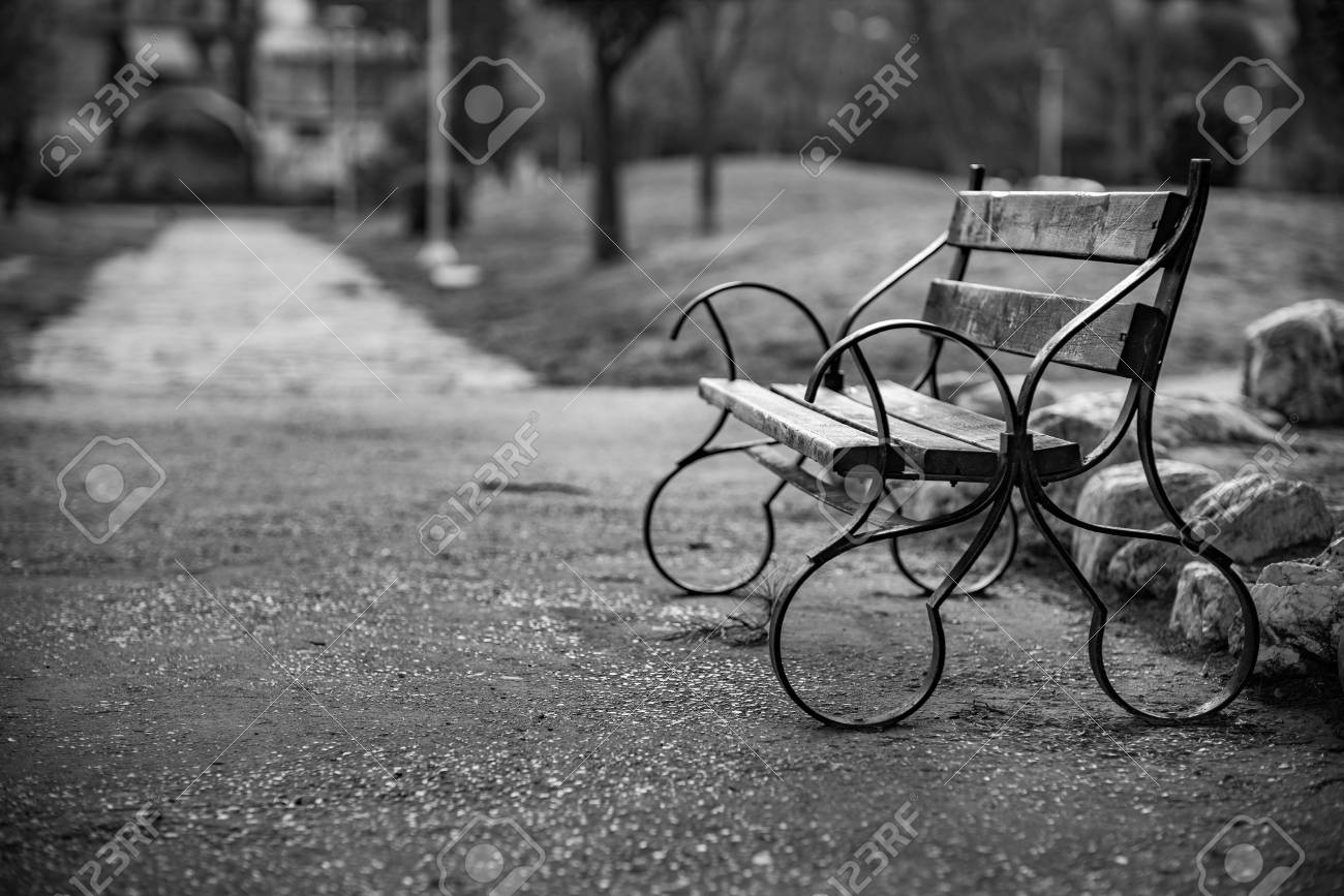 Beautiful bench in the park black and white classic style photograph nostalgia for old