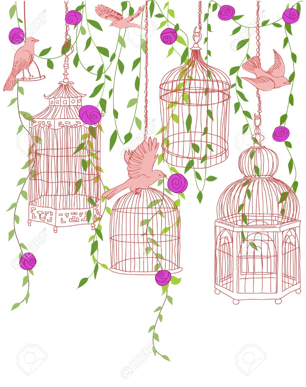 Hand-drawn illustration of a rose garden with birds and ornate cages Stock Vector - 12402990