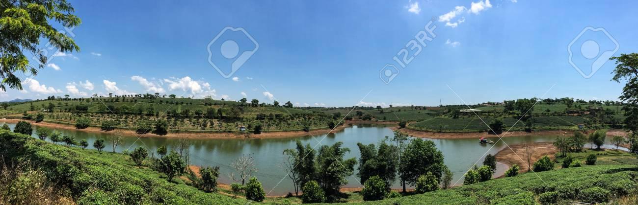 茶畑 Bao Loc、ベトナムで晴れた...