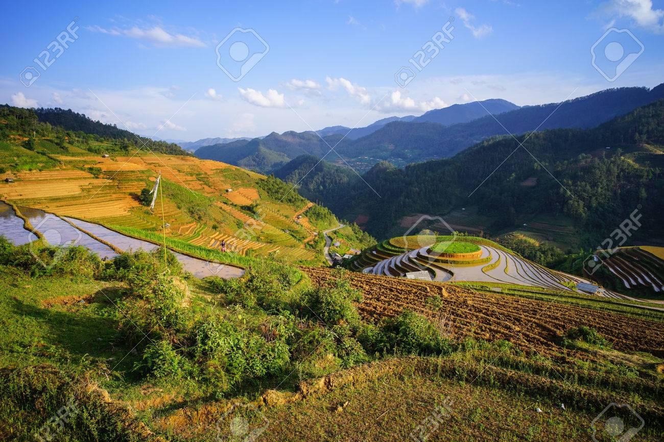 Campo De Arroz En Terrazas Con Montañas En Verano En Lao Cai Vietnam Lao Cai Y Sa Pa Son Dos Ciudades Importantes Dentro De La Provincia En La
