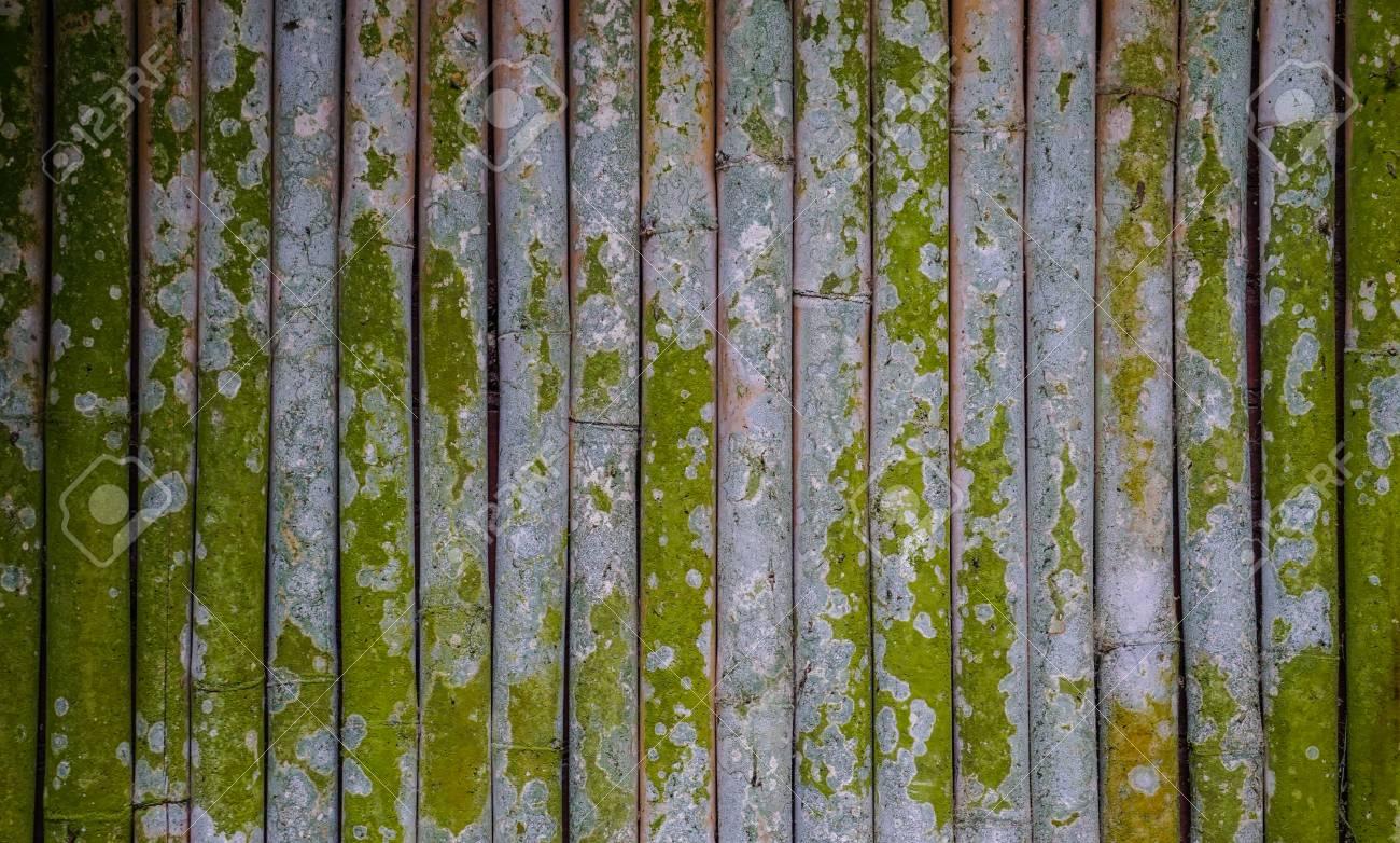 Clôture en bambou dans le jardin japonais à Kyoto, au Japon.
