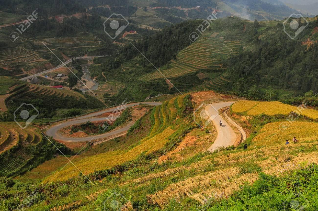 Paisaje De Campo De Arroz En Terrazas En Sapa Vietnam Sa Pa Tiene El Mercado Más Grande De La Provincia Y También Es Famoso Por Los Arrozales En