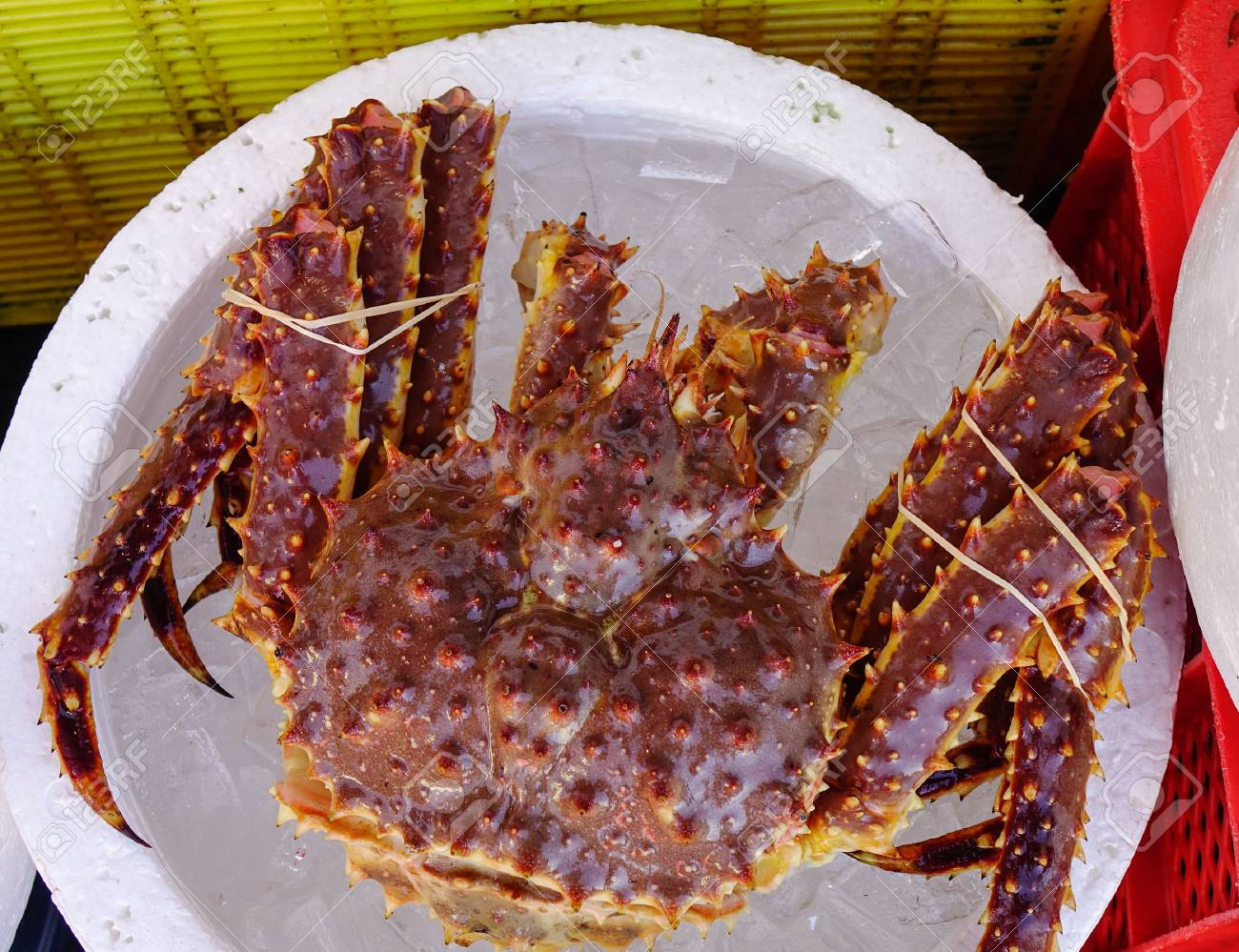 King Crab with ice for sale at Asaichi Market  Morning Fish Market