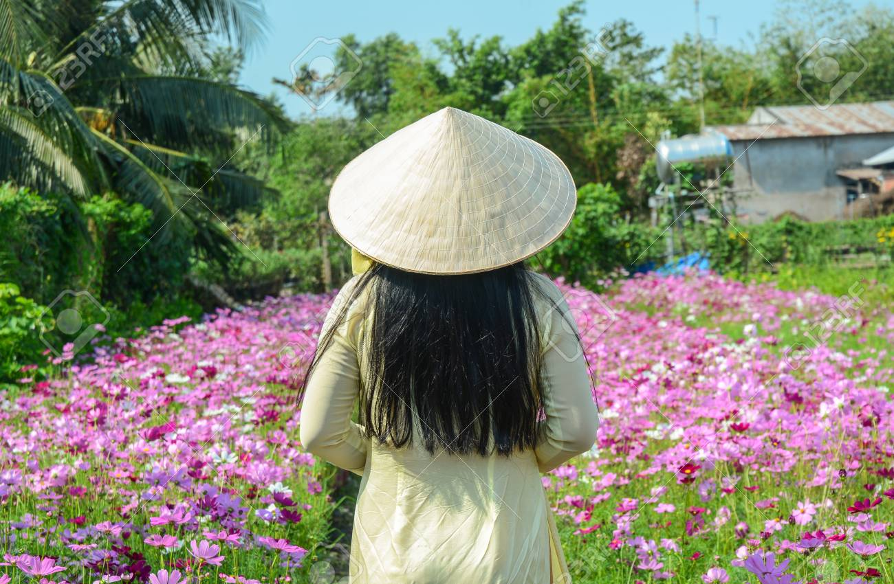 a vietnamese woman in traditional dress standing at cosmos flower garden stock photo 93340089 - Vietnamese Garden