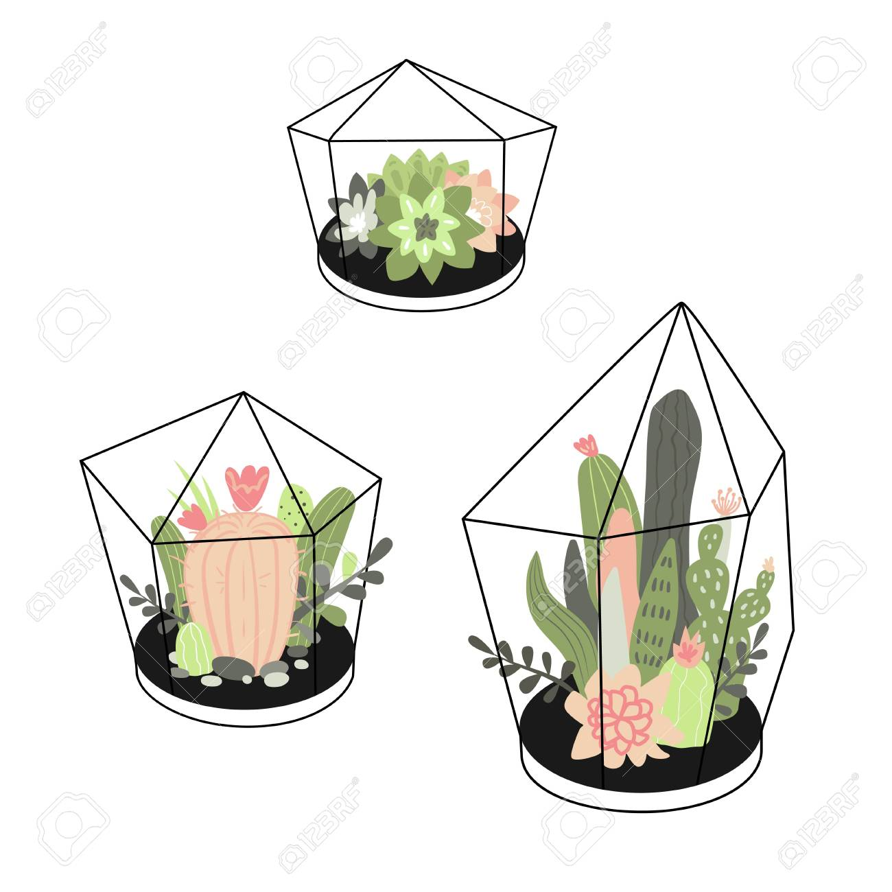 Vector Set With Cute Cactuses And Succulents In Terrariums Illustration Royalty Free Cliparts Vectors And Stock Illustration Image 92935433