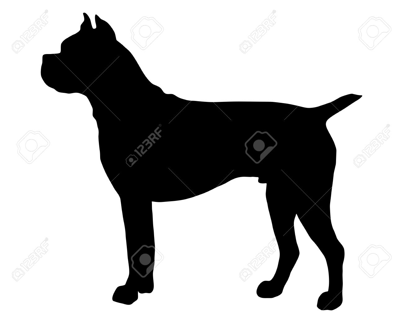 The black silhouette of a German  Boxer dog Stock Vector - 5734499