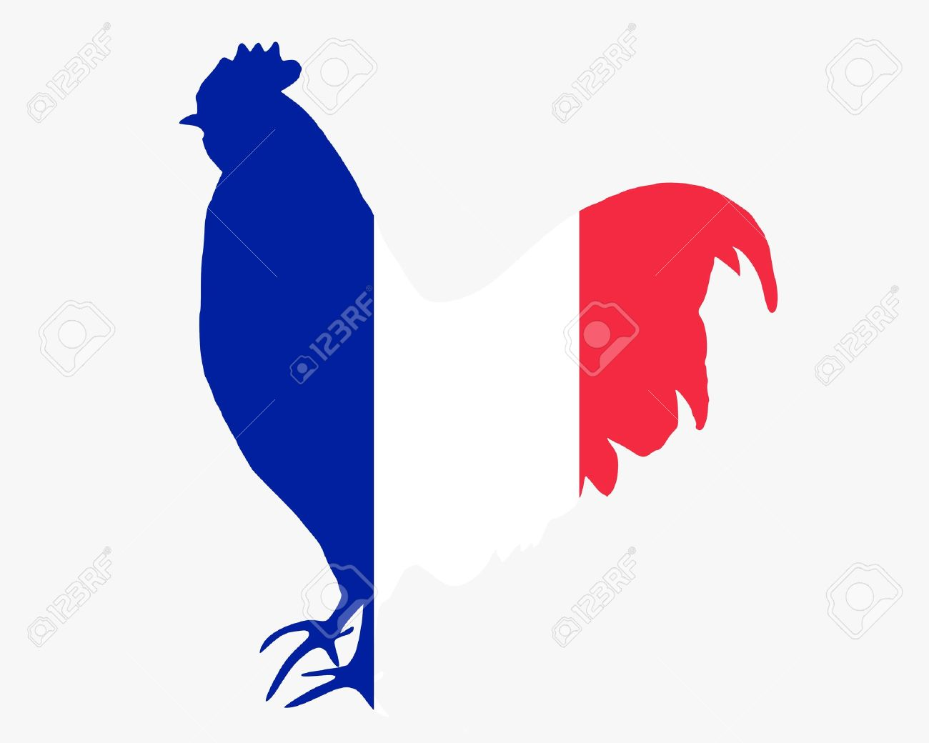 French cock Stock Photo - 7020488
