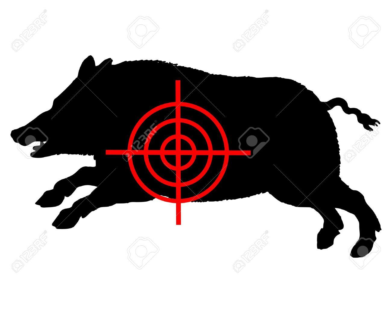 Boar crosslines Stock Vector - 11988440