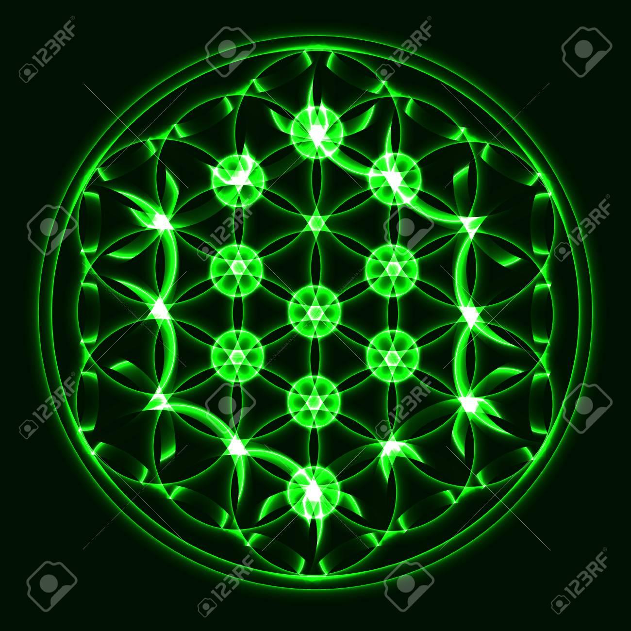 Vector El árbol De La Vida Símbolo De La Geometría Sagrada