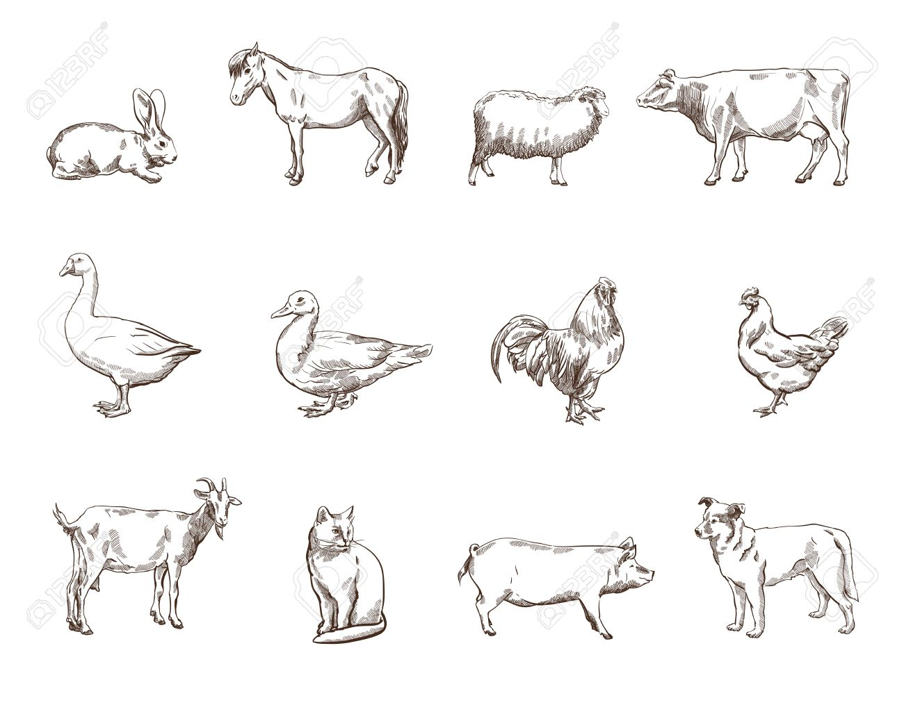Vector vector sketch of twelve farm animals silhouette