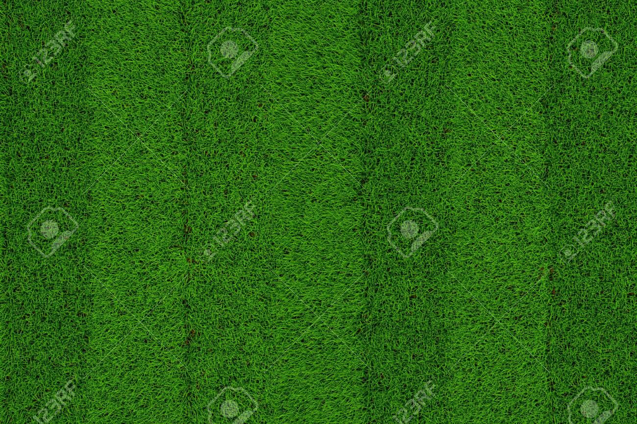 Green grass soccer field background - 125338270