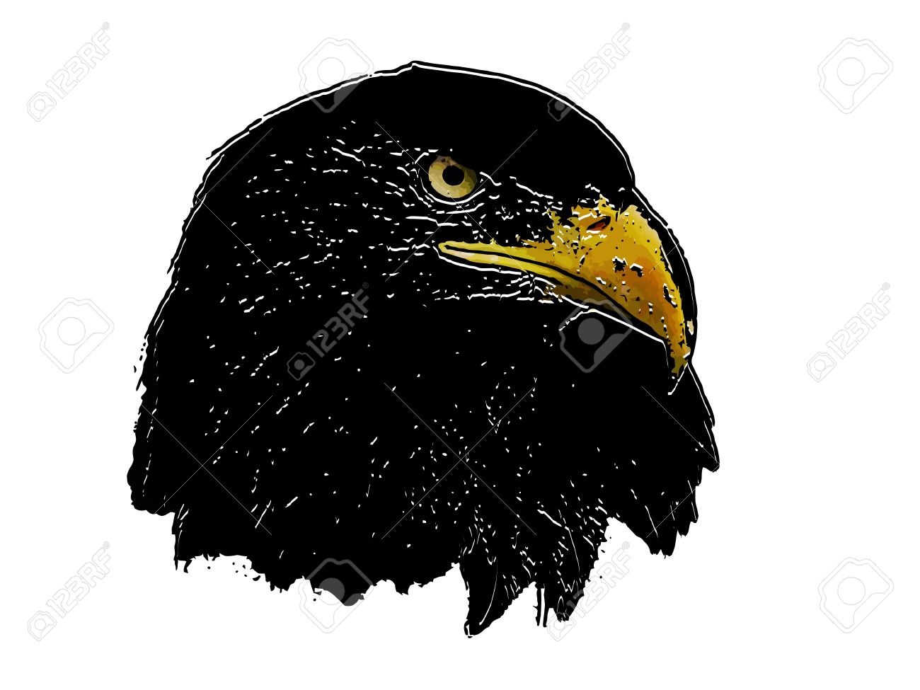 Graphical sketch of silhouette predator eagle Stock Vector - 14552145